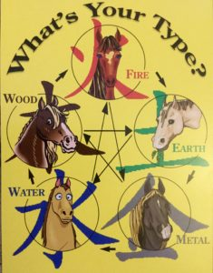 learn what type your horse is